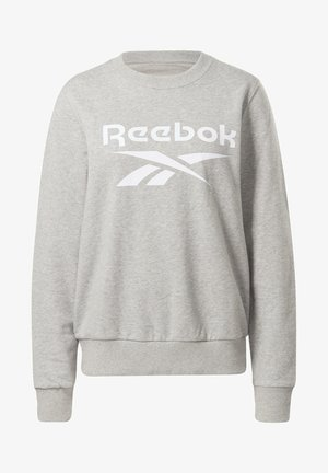 FRENCH TERRY BIG LOGO SWEATSHIRT - Sweatshirt - grey