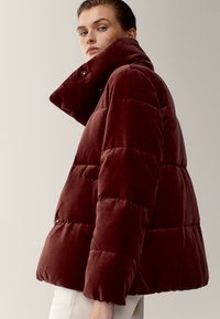 Massimo Dutti - Winter jacket - bordeaux - 2