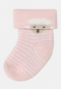 Ewers - SHEEP 6 PACK - Sokken - white/pink - 1