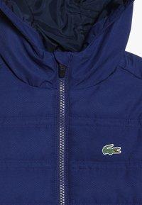 Lacoste - WINTER JACKET - Winter jacket - capitaine - 4