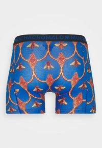 MUCHACHOMALO - BEEHIVE 5 PACK - Onderbroeken - royal blue/red/black - 10
