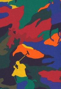 Polo Ralph Lauren - T-shirts print - multi-coloured - 2