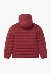 Save the duck - GIGAY - Winter jacket - ruby red - 1