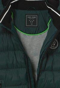 Cars Jeans - KIDS LENUX - Winter jacket - bottle - 3