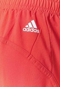 adidas Performance - BOS PANT - Pantaloni sportivi - crered/white - 5