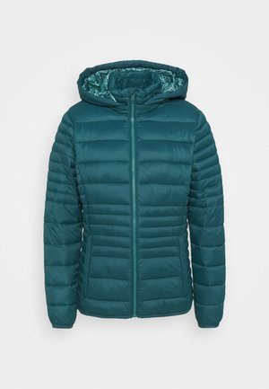 WOMAN JACKET SNAPS HOOD - Winterjacke - petrolio