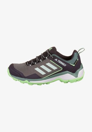 TERREX EASTRAIL GTX - Trail running shoes - glory mint / grey tint