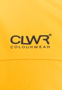 COLOURWEAR - TRACK - Snowboardjacke - yellow - 2