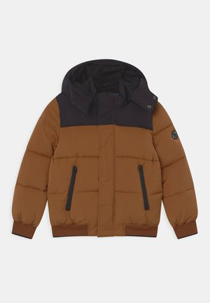 WATER REPELLENT HOODED PUFFER - Winter jacket - cacao