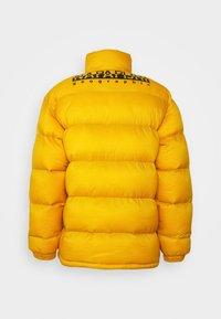 Napapijri The Tribe - TAMMIKUU UNISEX - Veste d'hiver - yellow solar - 1