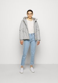 Save the duck - SMEGY - Winter jacket - frost grey - 1