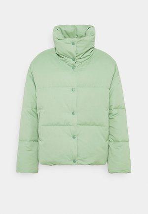 GOOD FRIENDS - Winter jacket - safari green