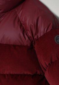 Napapijri - A-KAMPPI - Winter jacket - vint amarant - 3