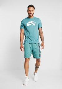 Nike SB - DRY SUNDAY - Shorts - bicoastal/anthracite - 1