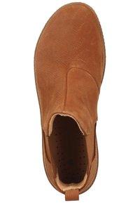 El Naturalista - Classic ankle boots - wood - 1