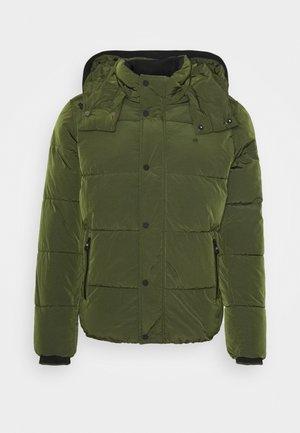 CRINKLE  - Winter jacket - green