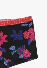Bonds - MULTI SHORTIE 3 PACK - Pants - multi-coloured - 5