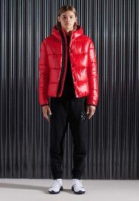Superdry - Winterjas - rouge red - 0