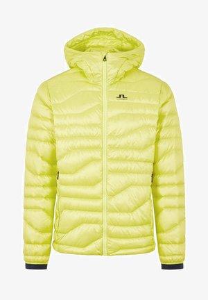 ERIK  - Down jacket - leaf yellow
