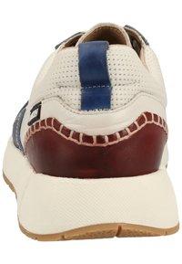 Pikolinos - Baskets basses - royal blue - 3