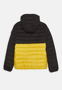 Quiksilver - SCALY MIX YOUTH - Winter jacket - honey - 1