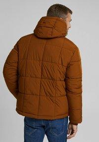 Esprit - BASIC PUFFER - Winter jacket - toffee - 2