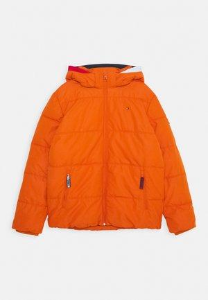 ESSENTIAL PADDED JACKET - Winterjas - orange