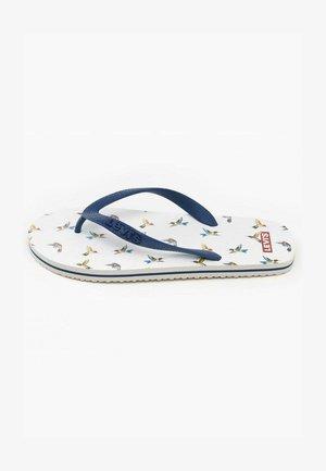 CHANCLAS DIXON - Sandalias de dedo - white/blue