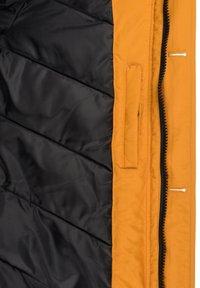 Solid - FRIGO - Winter coat - sudan brown - 6