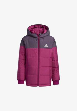 MIDWEIGHT PADDED JACKET - Winter jacket - burgundy