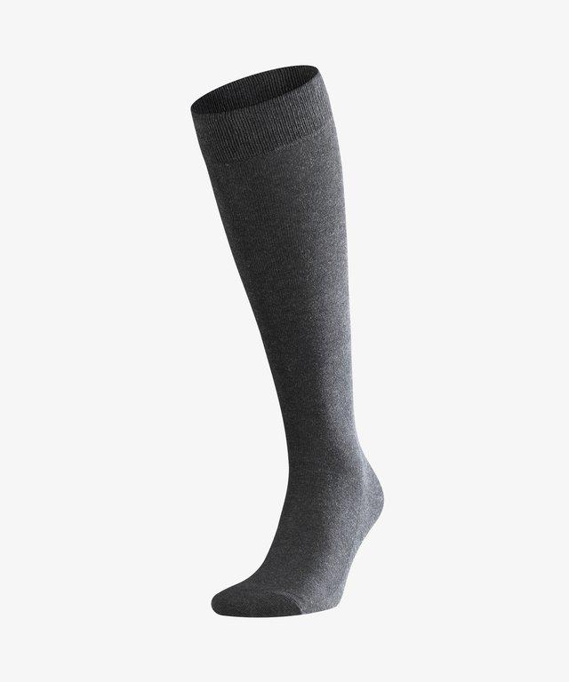 FAMILY - Knee high socks - grey