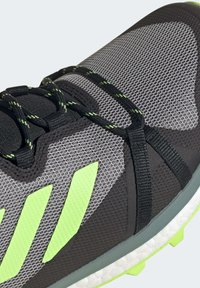 adidas Performance - TERREX SKYCHASER LT HIKING SHOES - Hiking shoes - grey - 8