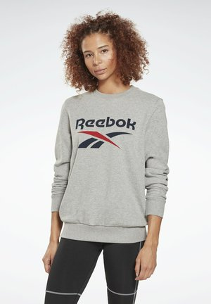 FRENCH TERRY BIG LOGO SWEATSHIRT - Felpa - grey