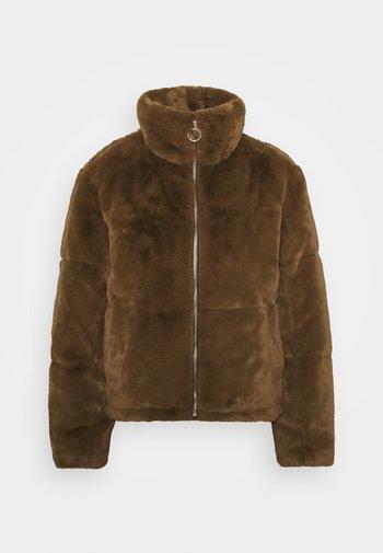 JDYTOUCH PADDED JACKET  - Winter jacket - pinecone