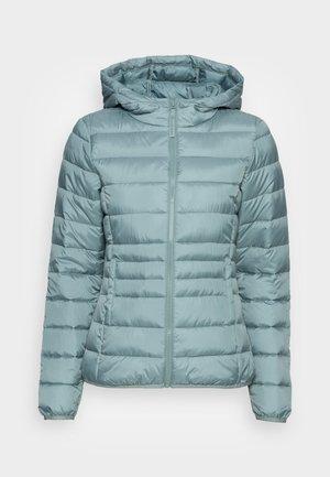 Light jacket - grey mint