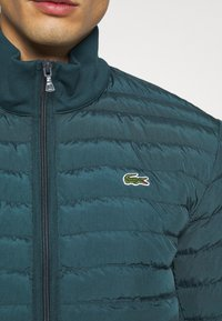Lacoste - Light jacket - wheelwright/enzian - 5