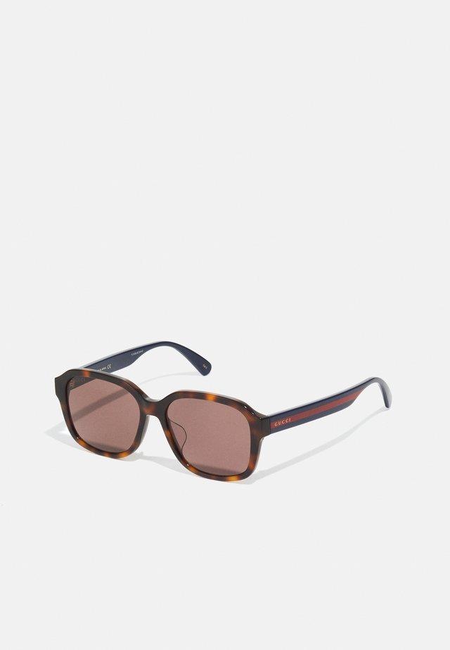 UNISEX - Gafas de sol - havana/blue/brown
