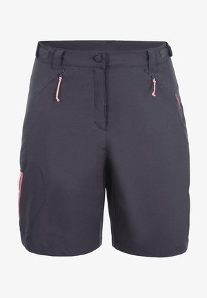 BEAUFORT - Sports shorts - grau