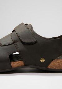 Panama Jack - FLETCHER BASIC  - Chodecké sandály - brown - 5