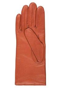 Roeckl - CLASSIC - Gloves - fox - 2