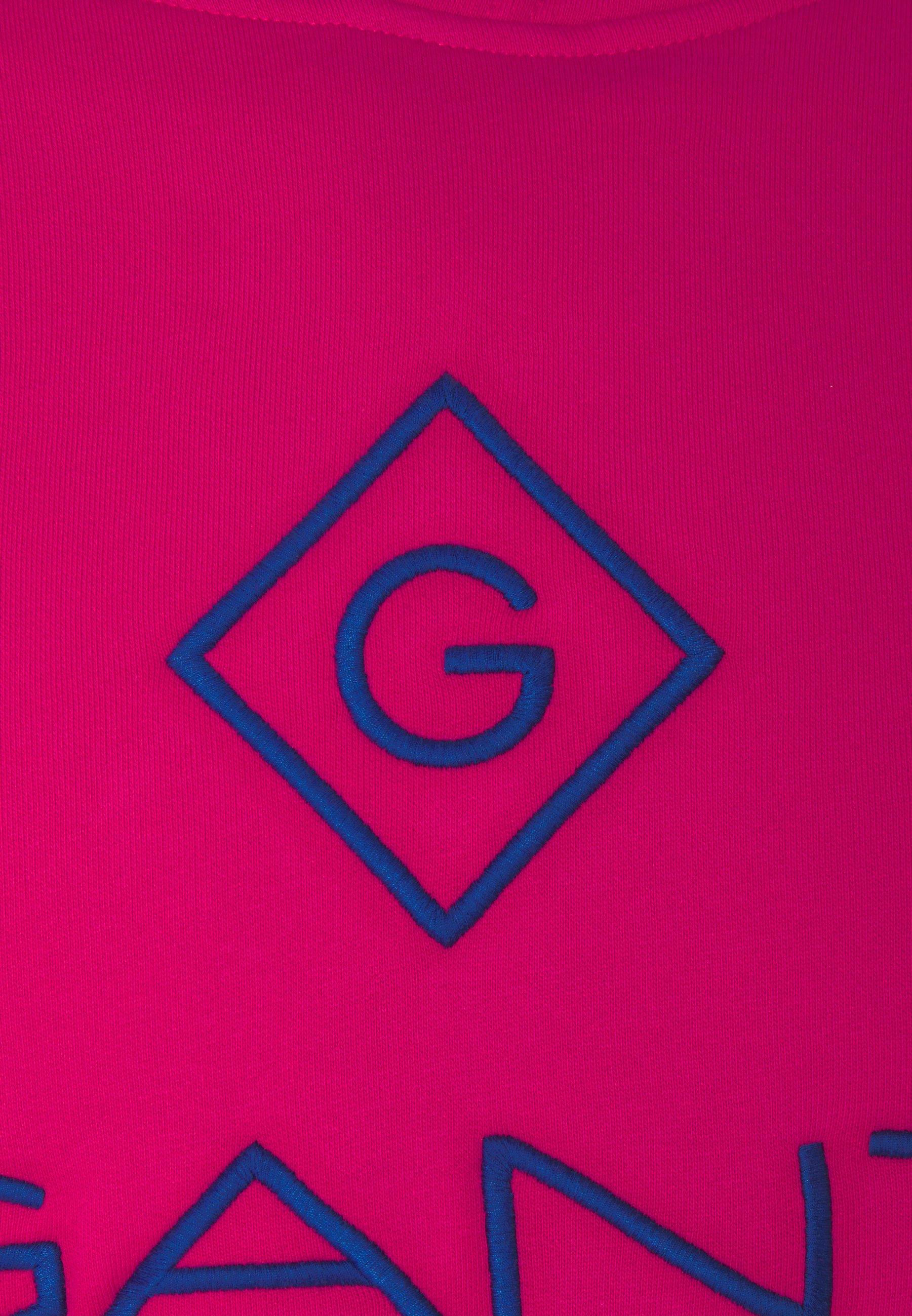GANT LOCK UP HOODIE - Sweat à capuche - pink