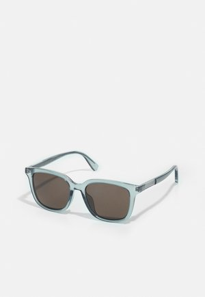 UNISEX - Lunettes de soleil - light-blue/light-blue/brown