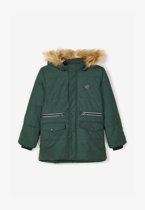 Winter jacket - darkest spruce
