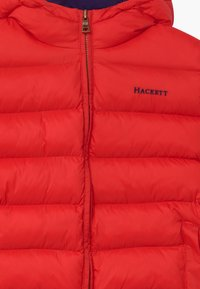 Hackett London - Winter jacket - red - 2