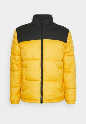 PUFFER COLLAR - Winter jacket - spicy mustard