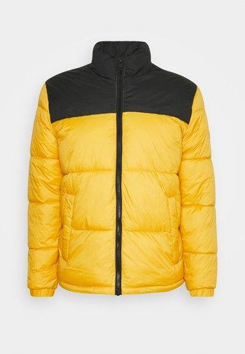 PUFFER COLLAR - Winter jacket - spicy mustard