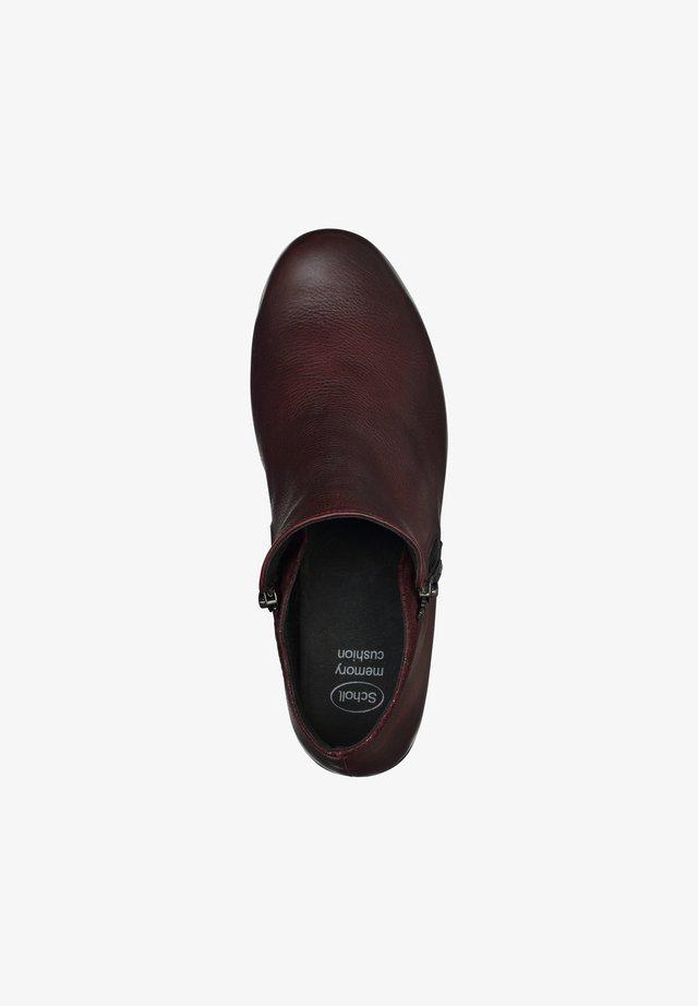 NOALE - Classic ankle boots - bordeaux