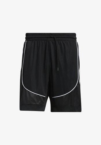 CREATOR 365 2.0 - Sports shorts - black