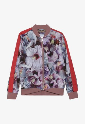 HANNA - Chaquetas bomber - multi-coloured