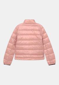 Blauer - GIUBBINI CORTI - Down jacket - soft pink - 1
